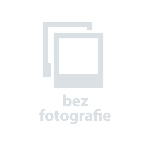 Řetězový zámek na motocykl ABUS Granit CityChain 1010/110 (černý)